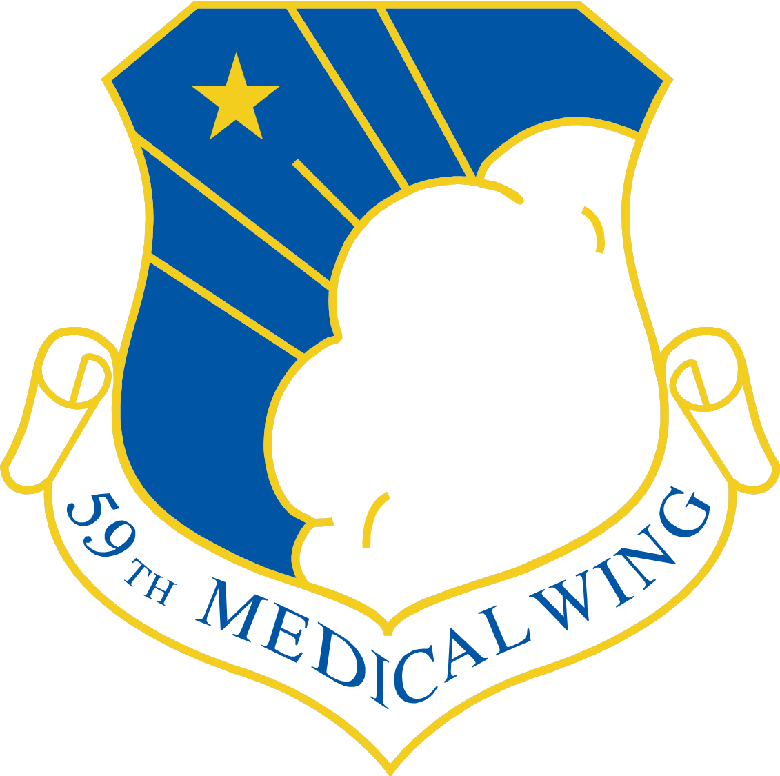 59th Medical Wing Shield
