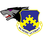 8th Medical Group Emblem