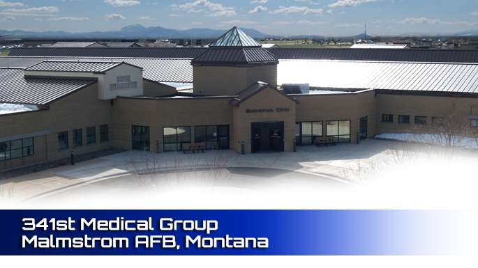 341st Medical Group Malmstrom AFB clinic screenshot